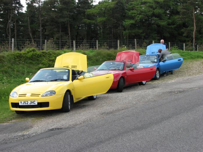 Mine is the yellow one. Photo taken on a summer run