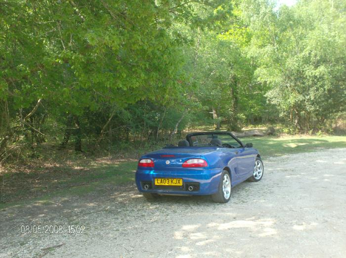 Going topless in the New Forest